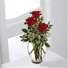 Romance of Roses (Standard)