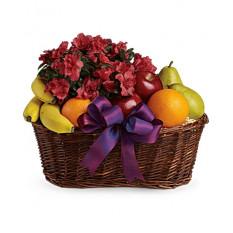 Früchte und Blüten Korb (Standard)
