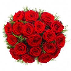 18 erstklassige rote Rosen