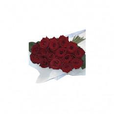 Blumenkasten Rote Rosen 30 Stk