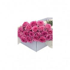Blumenkasten rosa Rosen 30 Stk