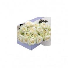 Blumenkasten Weiße Rosen 30 Stk