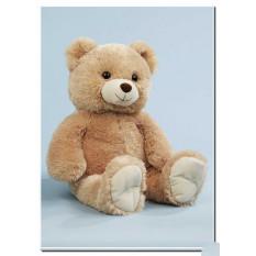 Kuscheliger Teddybär