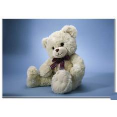 Kuschel Teddybär 1
