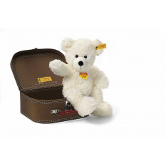 Teddybär Fynn im Koffer