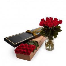 Rosen Rot (24 Stämme)