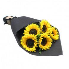 Sonnenblumen - Sonnenaufgang (5 Stämme)