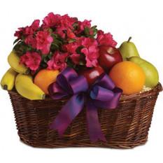 Obst & Blüten (klein)