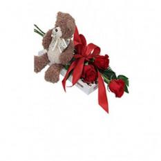 Bär, Schokolade und 3 Rose