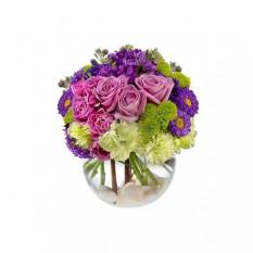 Lavendel errötet